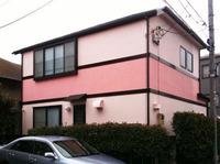 P_House_4b.jpg